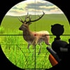 Deer Sniper Game Online